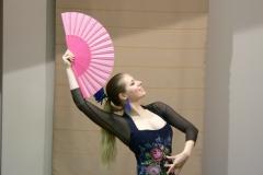 flamenko2